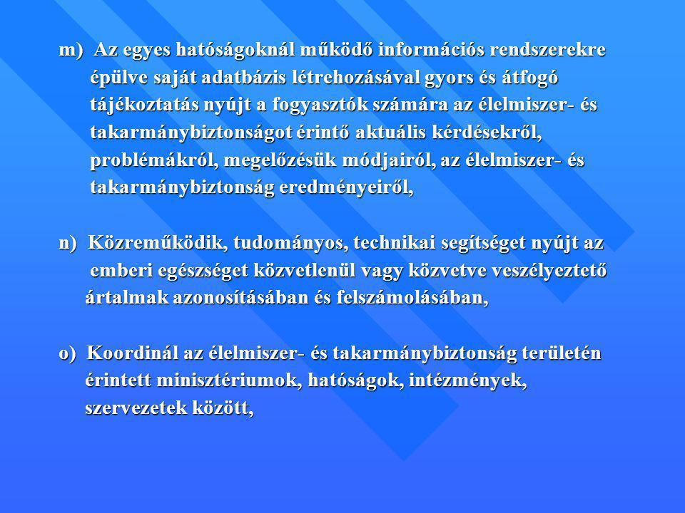 m) Az egyes hatóságoknál működő információs rendszerekre