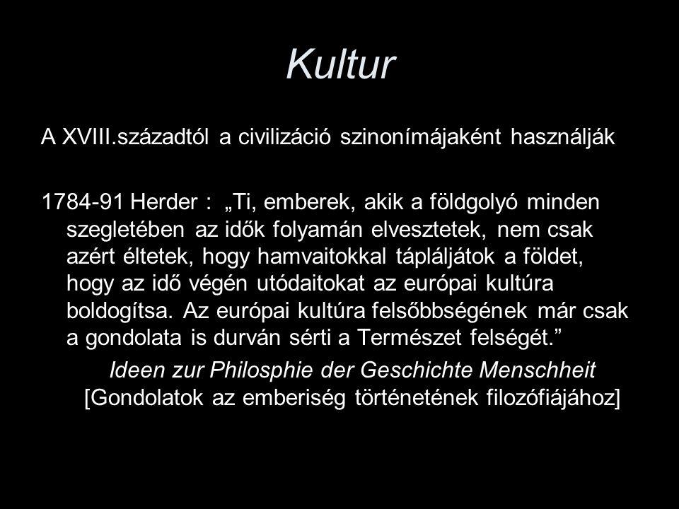 Kultur A XVIII.századtól a civilizáció szinonímájaként használják