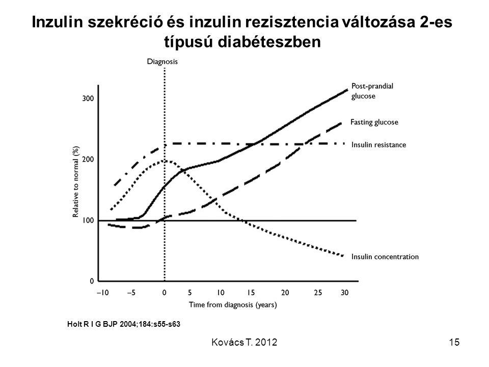 Inzulin szekréció és inzulin rezisztencia változása 2-es típusú diabéteszben
