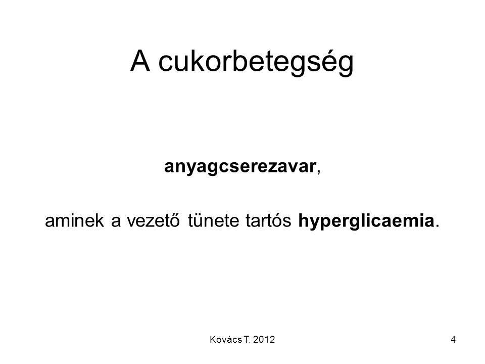 aminek a vezető tünete tartós hyperglicaemia.