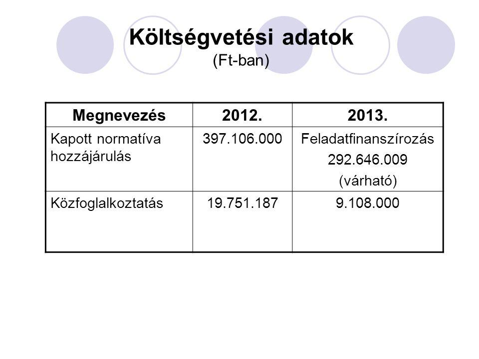 Költségvetési adatok (Ft-ban)