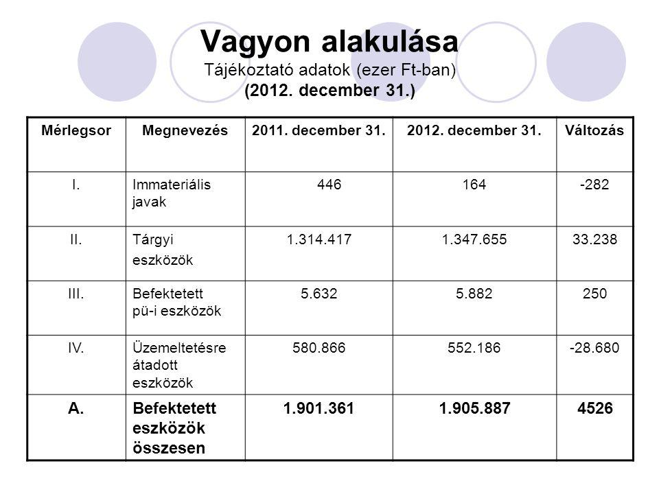 Vagyon alakulása Tájékoztató adatok (ezer Ft-ban) (2012. december 31.)