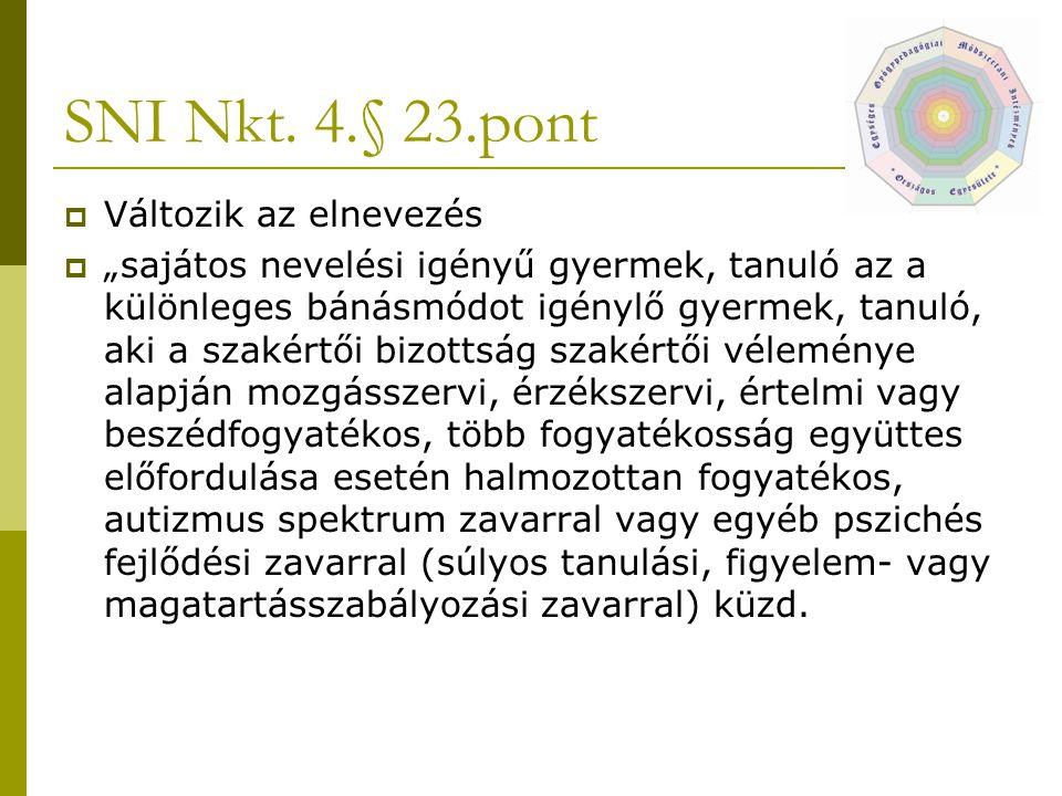 SNI Nkt. 4.§ 23.pont Változik az elnevezés