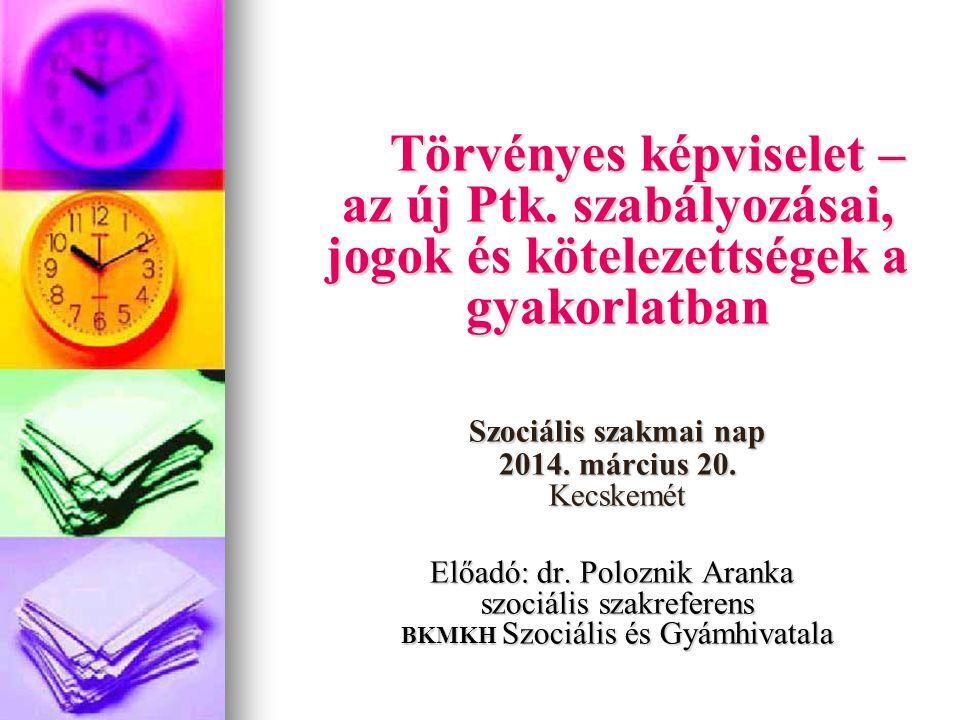 Szociális szakmai nap 2014. március 20. Kecskemét