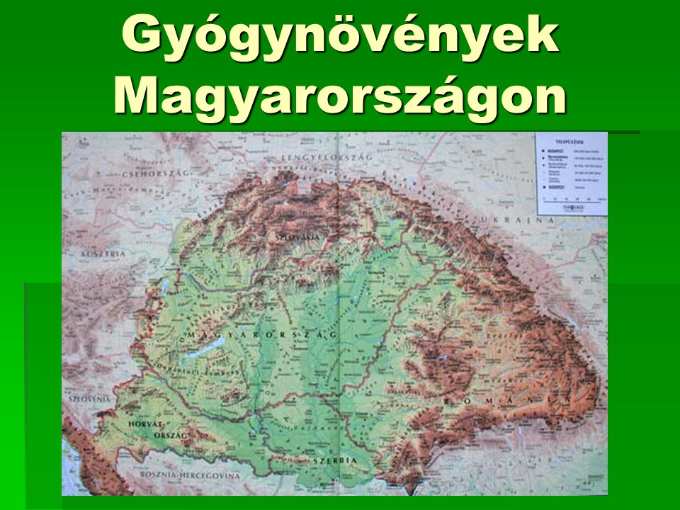 Gyógynövények Magyarországon