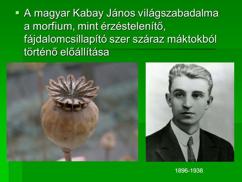 A magyar Kabay János világszabadalma a morfium, mint érzéstelenítő, fájdalomcsillapító szer száraz máktokból történő előállítása