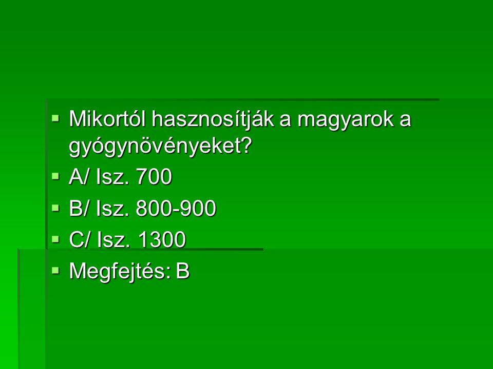 Mikortól hasznosítják a magyarok a gyógynövényeket