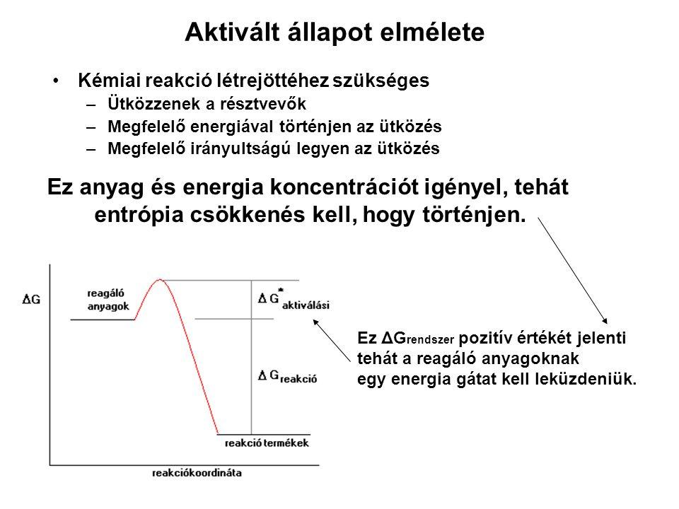 Aktivált állapot elmélete