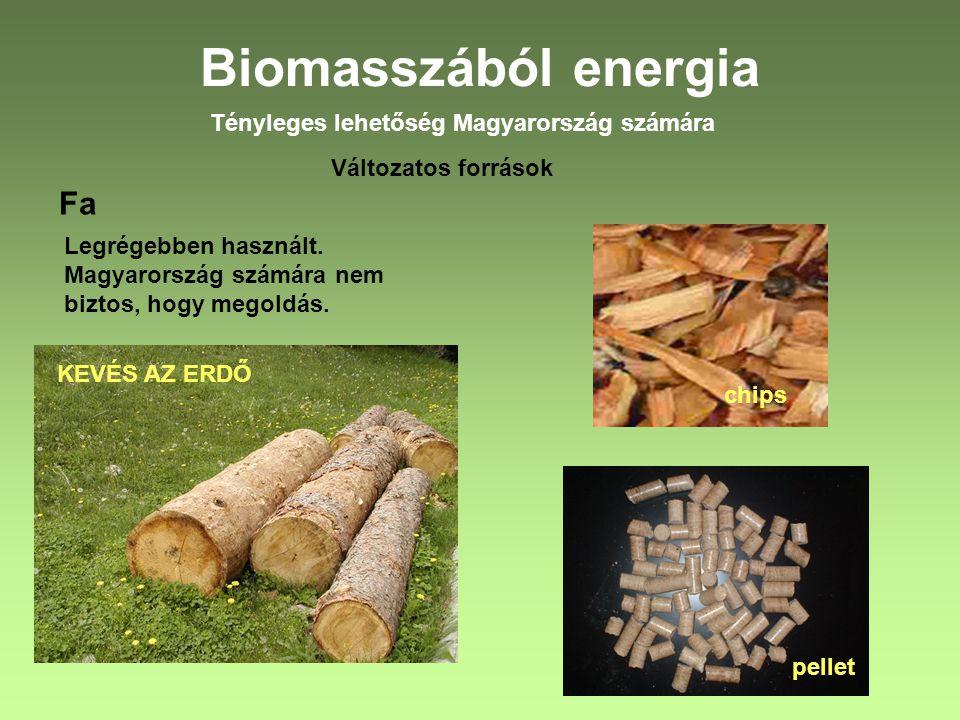 Biomasszából energia Fa Tényleges lehetőség Magyarország számára