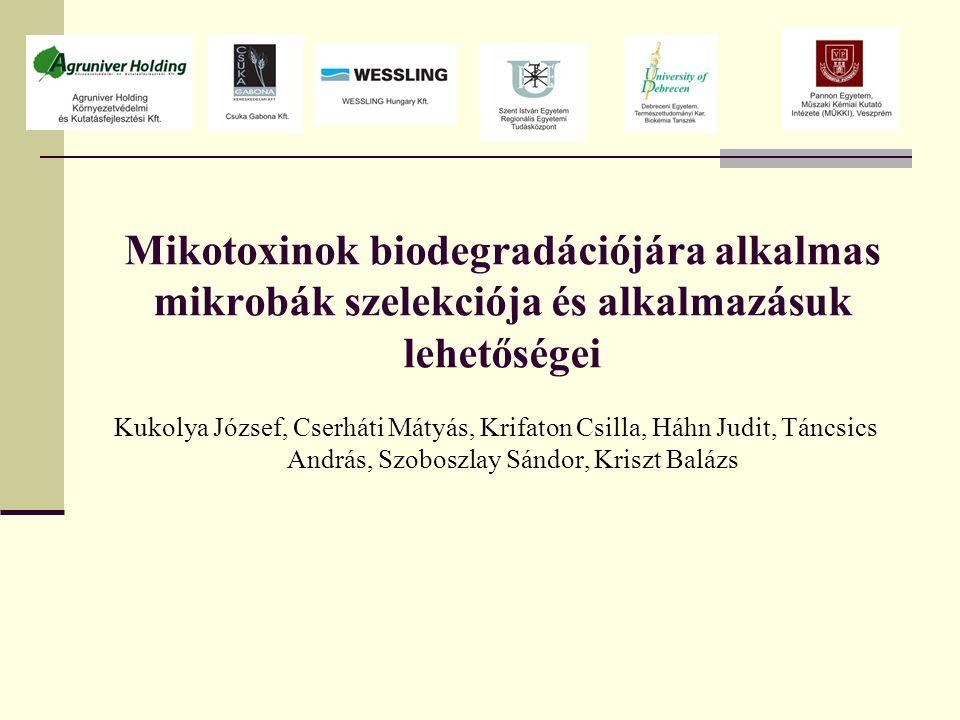 Mikotoxinok biodegradációjára alkalmas mikrobák szelekciója és alkalmazásuk lehetőségei