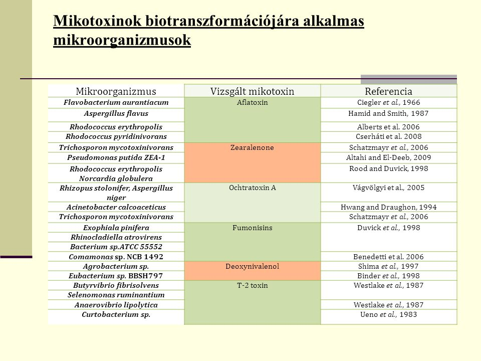 Mikotoxinok biotranszformációjára alkalmas mikroorganizmusok