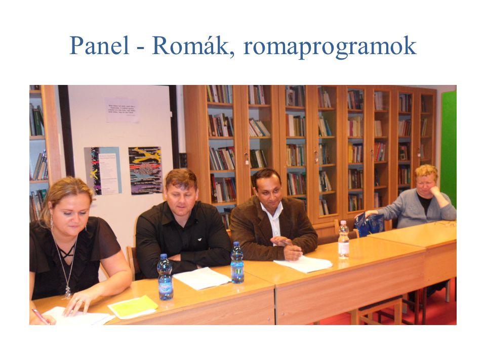 Panel - Romák, romaprogramok