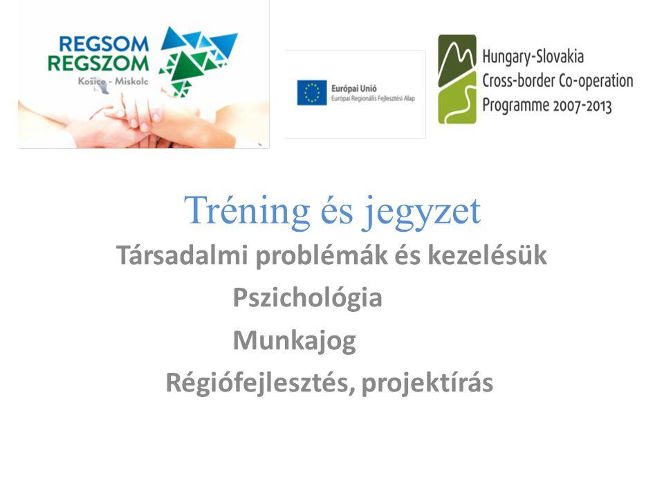 Társadalmi problémák és kezelésük