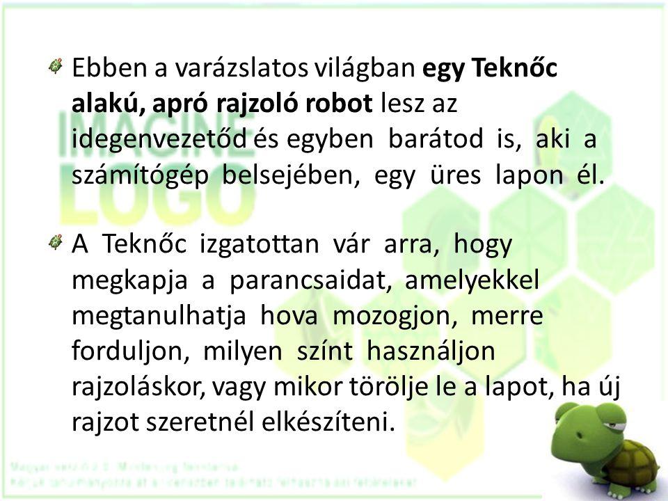 Ebben a varázslatos világban egy Teknőc alakú, apró rajzoló robot lesz az idegenvezetőd és egyben barátod is, aki a számítógép belsejében, egy üres lapon él.