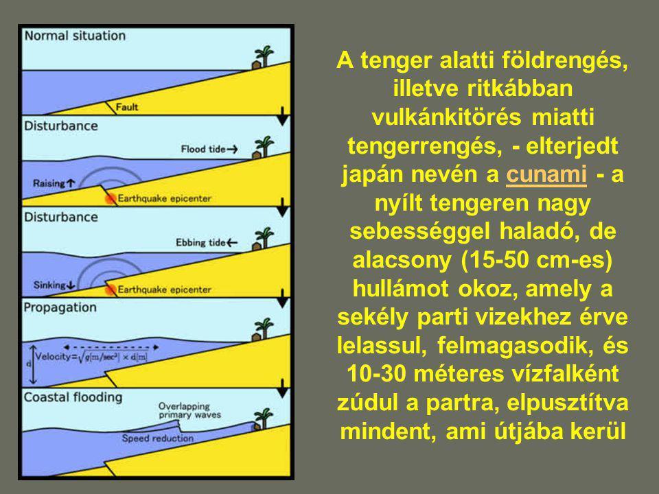 A tenger alatti földrengés, illetve ritkábban vulkánkitörés miatti tengerrengés, - elterjedt japán nevén a cunami - a nyílt tengeren nagy sebességgel haladó, de alacsony (15-50 cm-es) hullámot okoz, amely a sekély parti vizekhez érve lelassul, felmagasodik, és 10-30 méteres vízfalként zúdul a partra, elpusztítva mindent, ami útjába kerül
