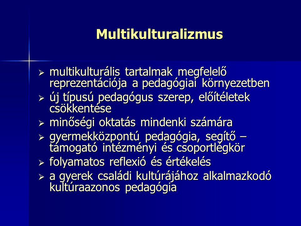 Multikulturalizmus multikulturális tartalmak megfelelő reprezentációja a pedagógiai környezetben.