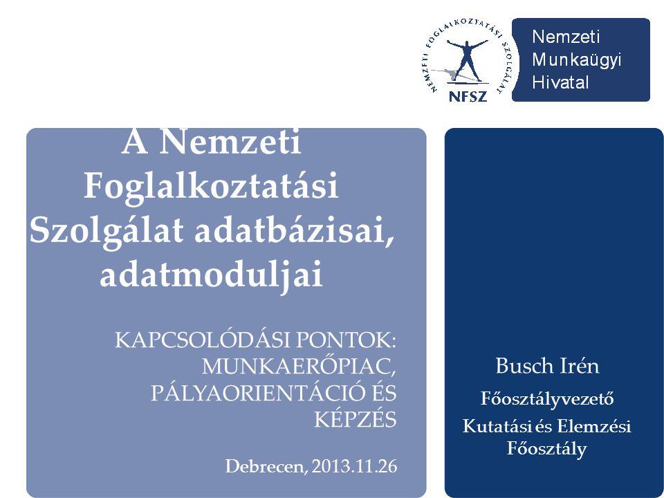A Nemzeti Foglalkoztatási Szolgálat adatbázisai, adatmoduljai