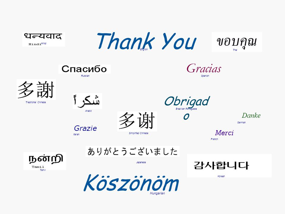 Thank You Köszönöm Gracias Obrigado Danke Grazie Merci Hungarian Hindi