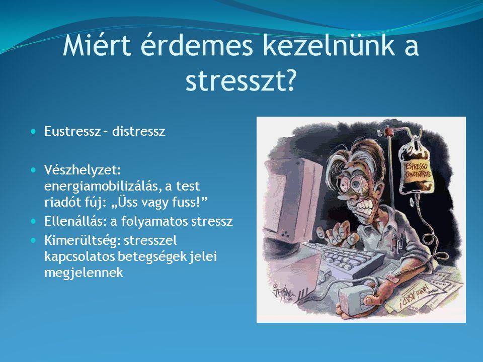 Miért érdemes kezelnünk a stresszt