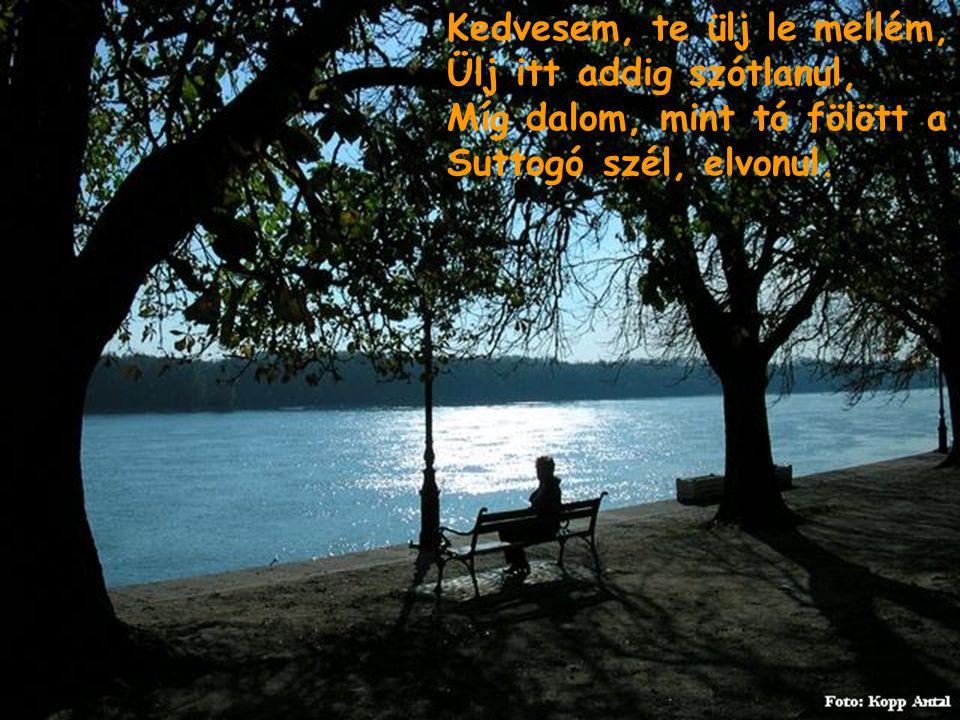 Kedvesem, te ülj le mellém, Ülj itt addig szótlanul, Míg dalom, mint tó fölött a Suttogó szél, elvonul.
