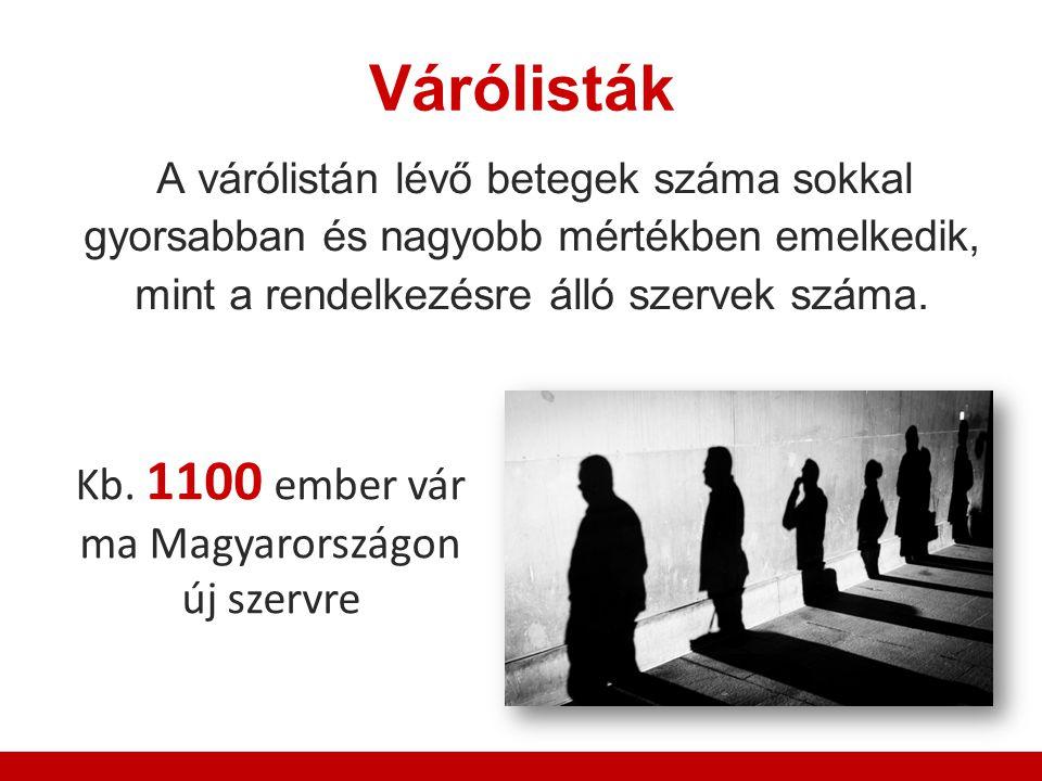 Várólisták Kb. 1100 ember vár ma Magyarországon új szervre