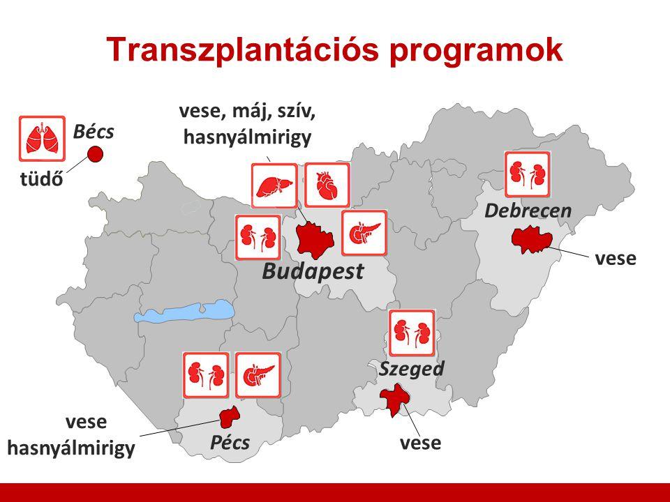Transzplantációs programok
