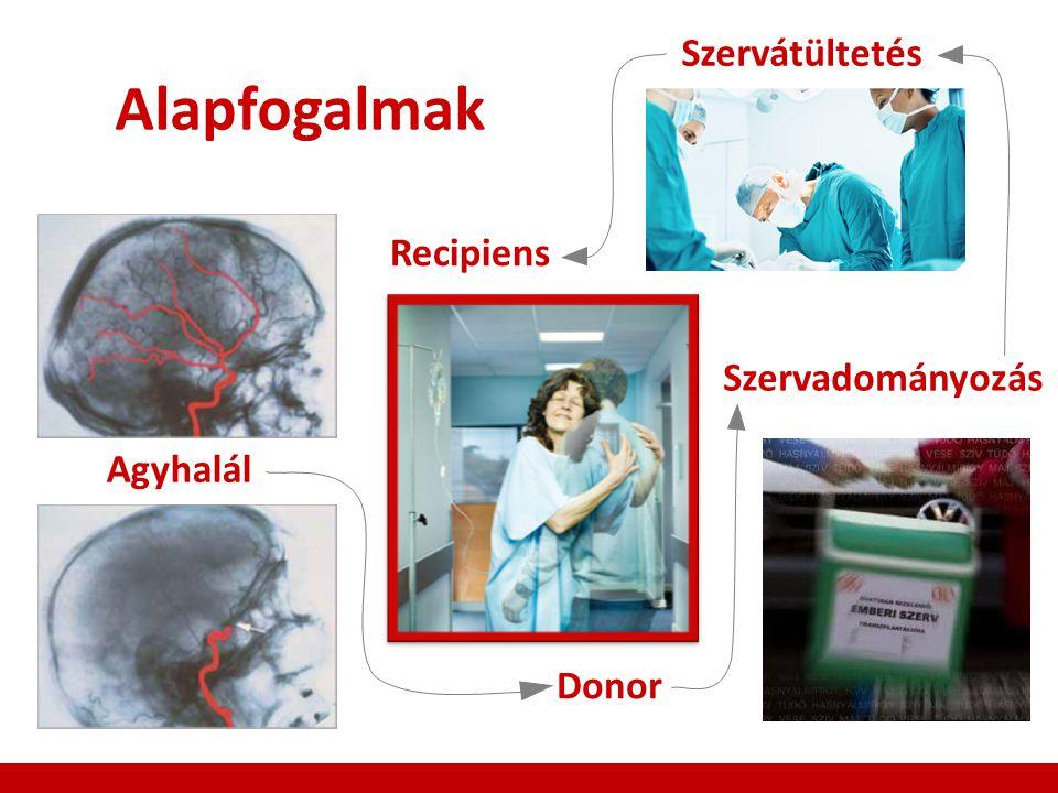 Szervátültetés Alapfogalmak Recipiens Szervadományozás Agyhalál Donor