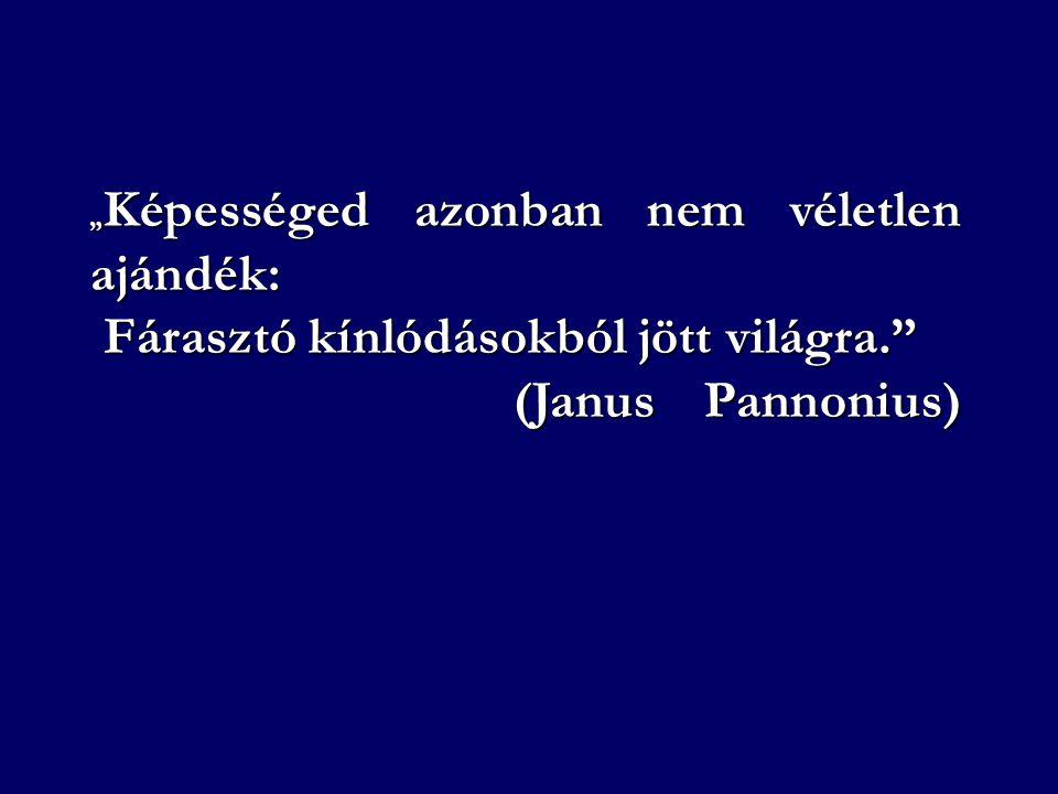 Fárasztó kínlódásokból jött világra. (Janus Pannonius)