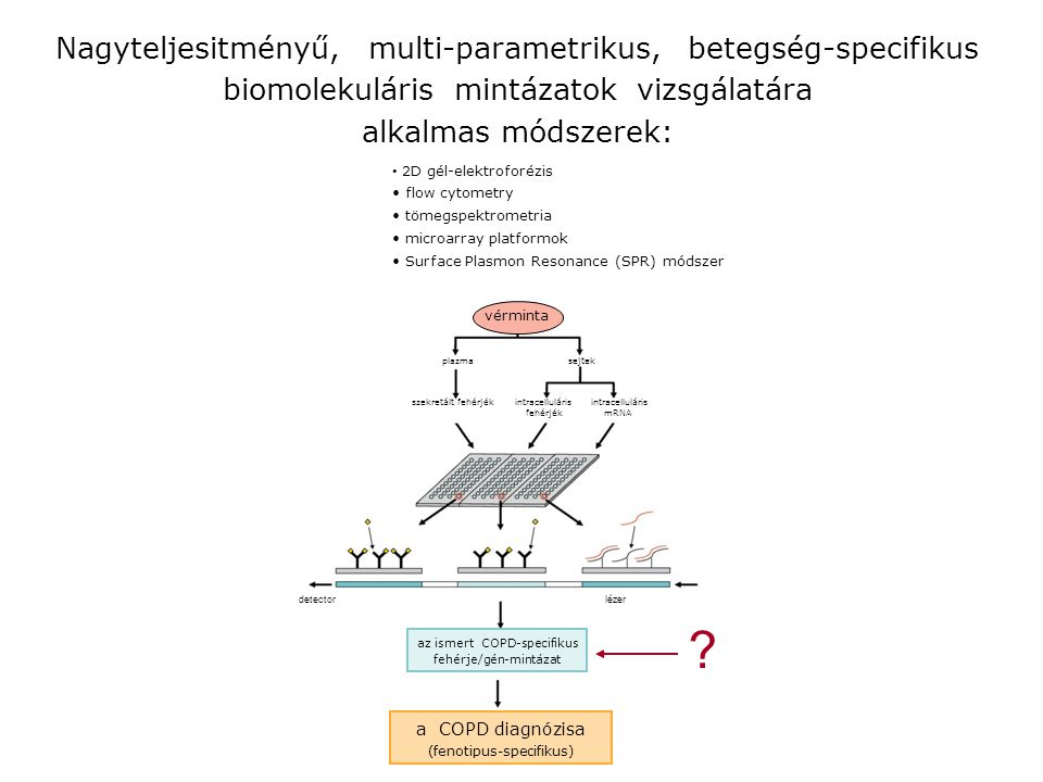 Nagyteljesitményű, multi-parametrikus, betegség-specifikus biomolekuláris mintázatok vizsgálatára