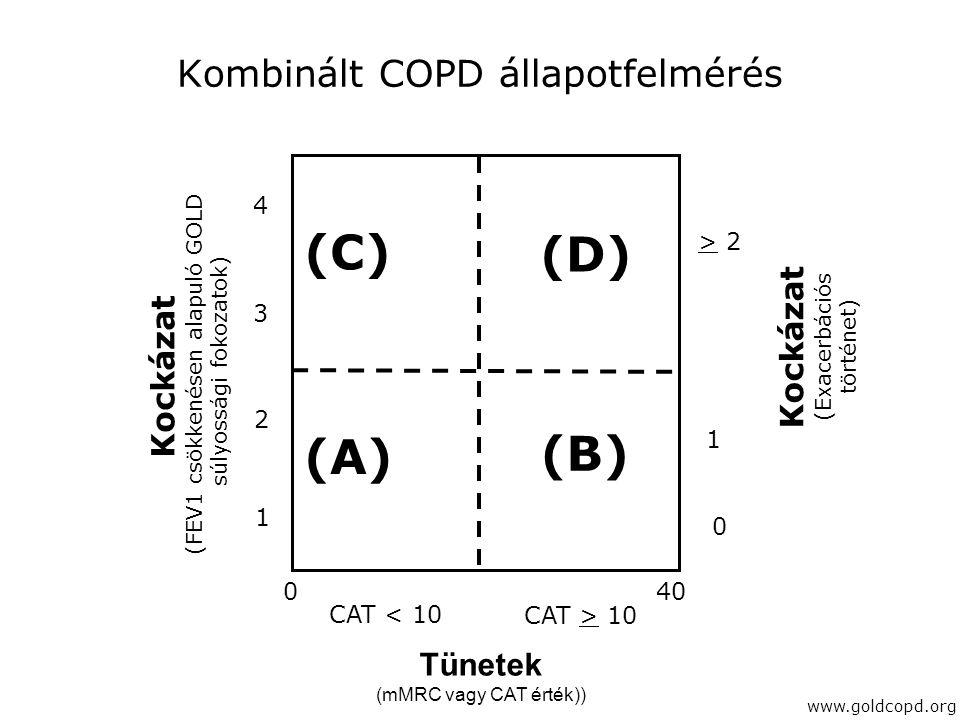 Kombinált COPD állapotfelmérés