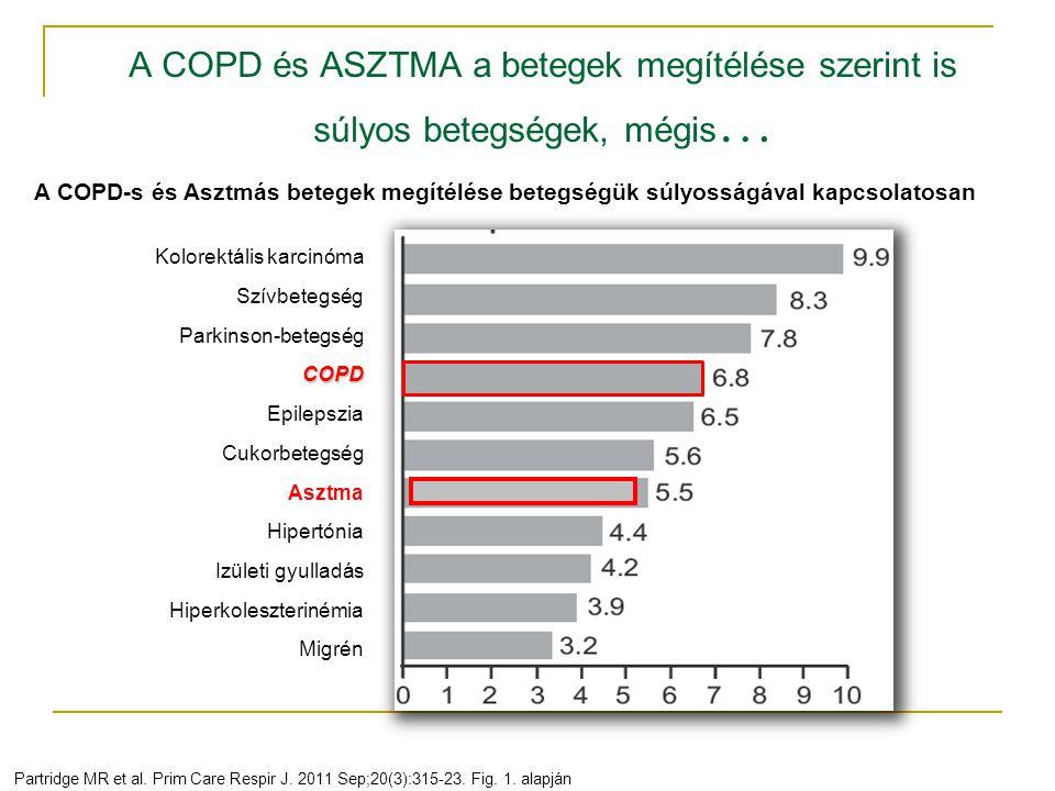 A COPD és ASZTMA a betegek megítélése szerint is súlyos betegségek, mégis…