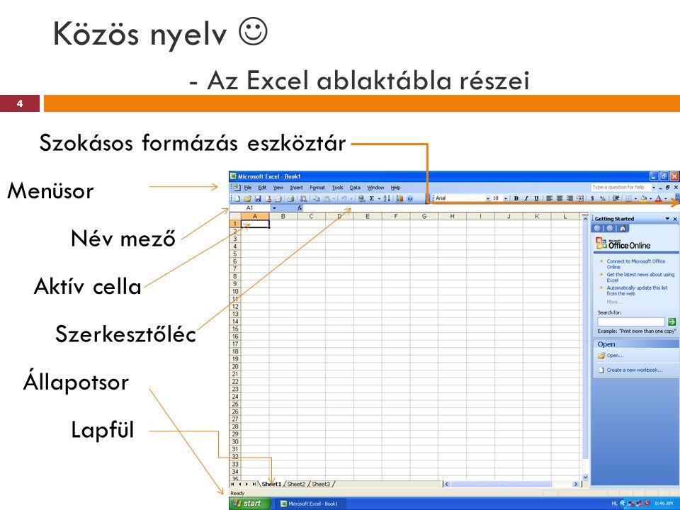 Közös nyelv  - Az Excel ablaktábla részei
