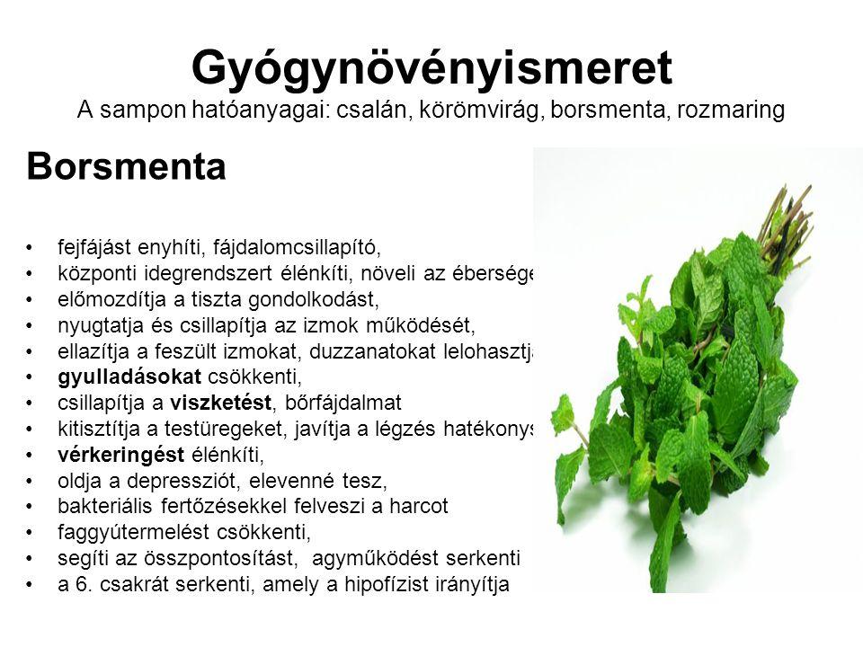 Gyógynövényismeret A sampon hatóanyagai: csalán, körömvirág, borsmenta, rozmaring