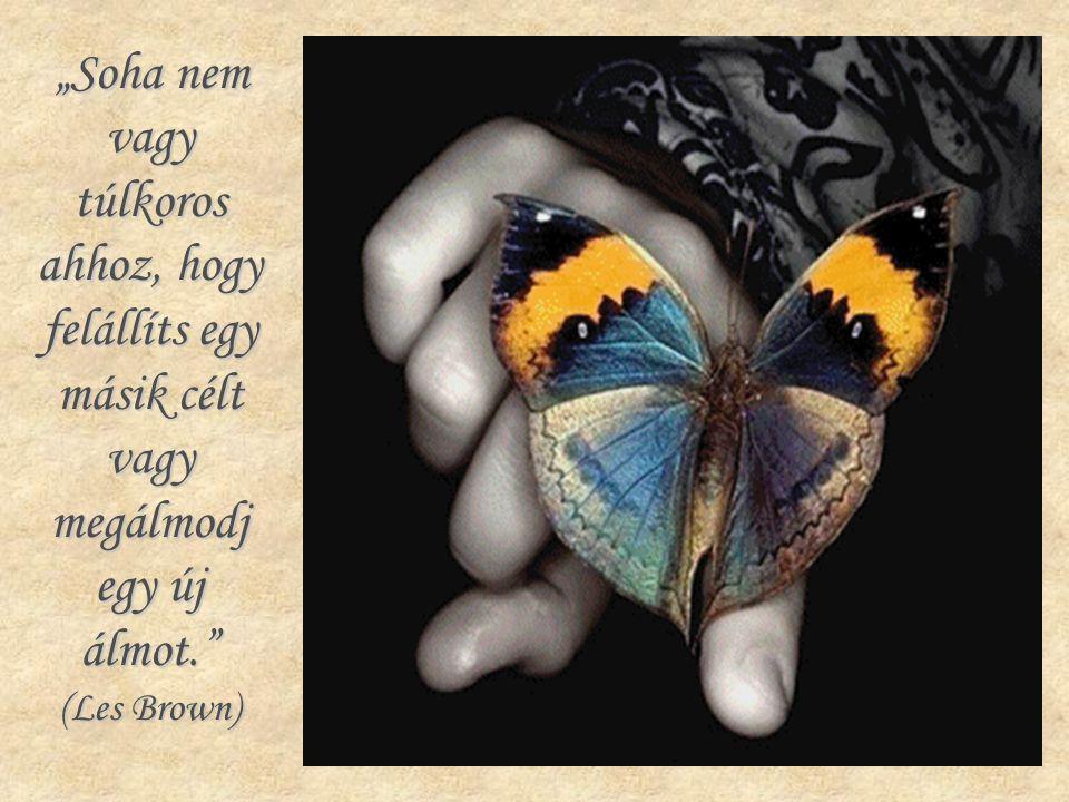 """""""Soha nem vagy túlkoros ahhoz, hogy felállíts egy másik célt vagy megálmodj egy új álmot. (Les Brown)"""