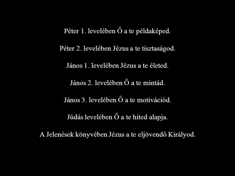 Péter 1. levelében Ő a te példaképed.