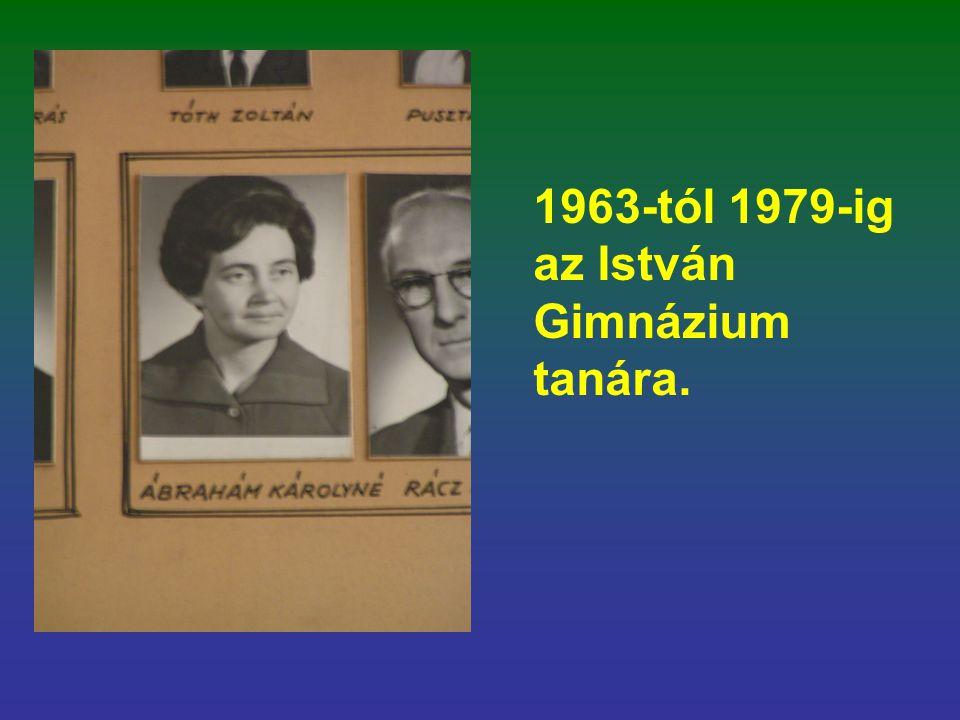1963-tól 1979-ig az István Gimnázium tanára.