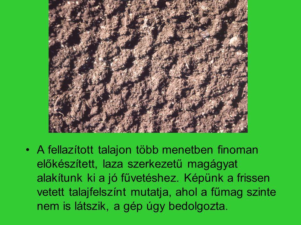 A fellazított talajon több menetben finoman előkészített, laza szerkezetű magágyat alakítunk ki a jó fűvetéshez.