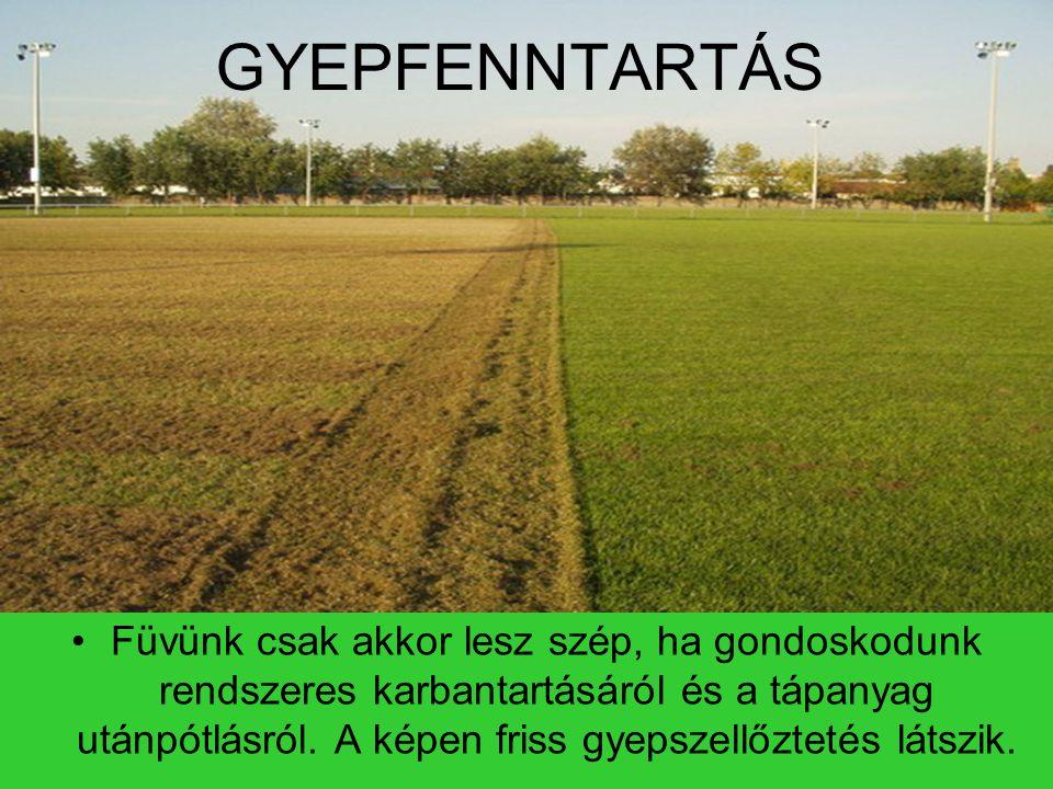 GYEPFENNTARTÁS