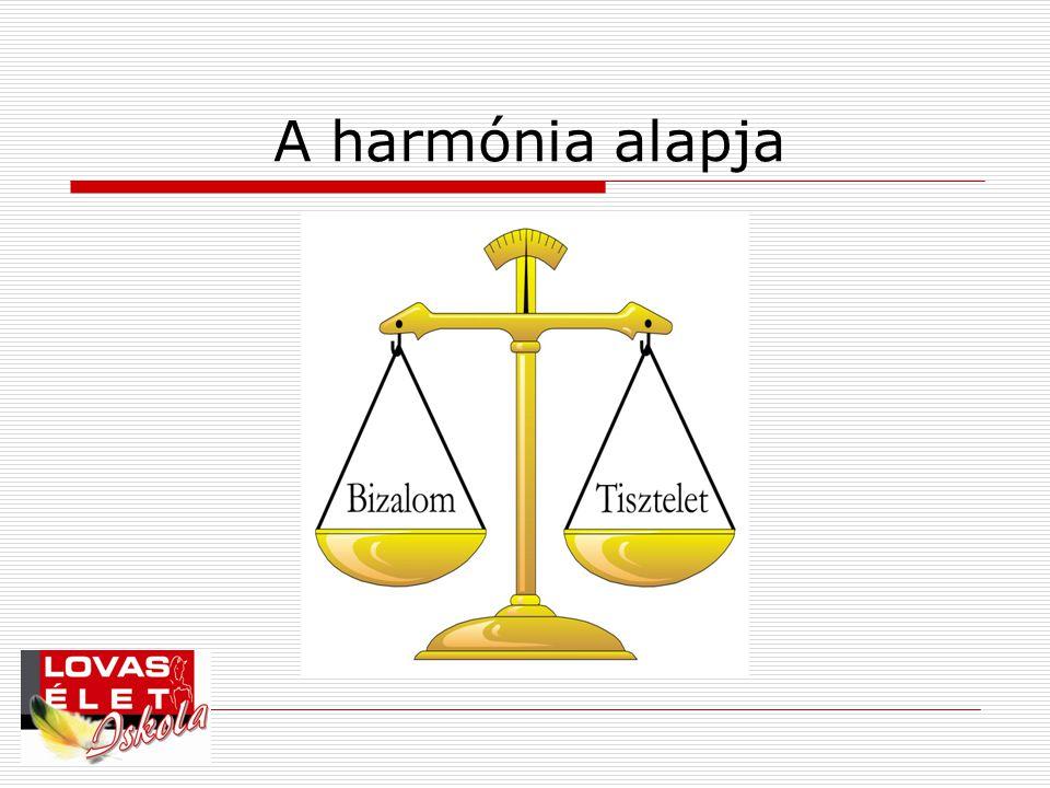 A harmónia alapja