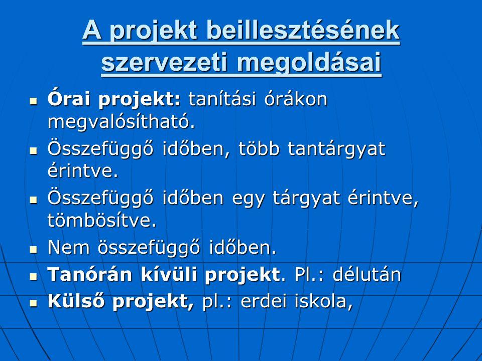 A projekt beillesztésének szervezeti megoldásai
