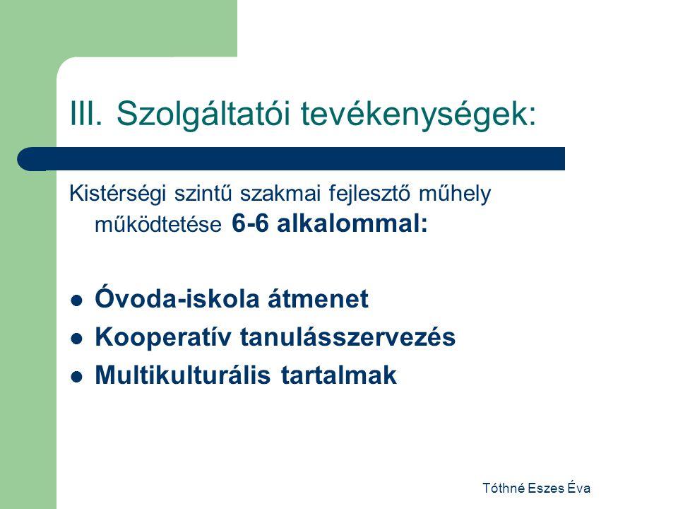 III. Szolgáltatói tevékenységek: