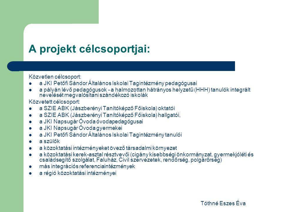 A projekt célcsoportjai: