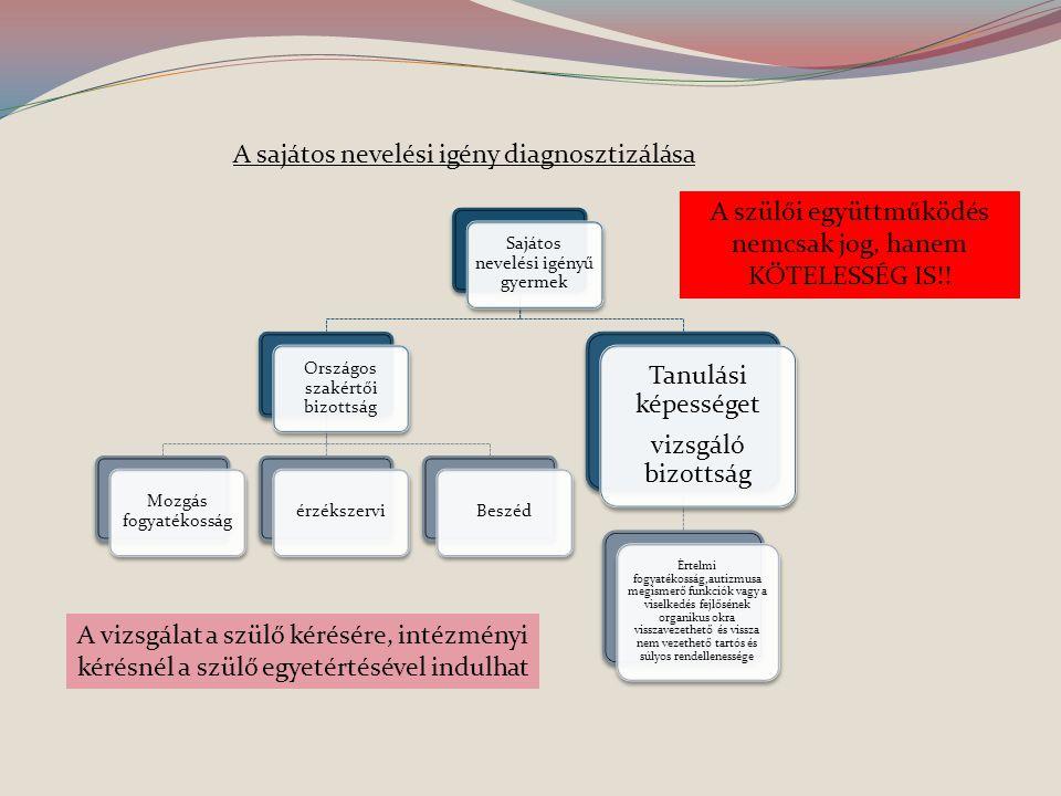 A sajátos nevelési igény diagnosztizálása
