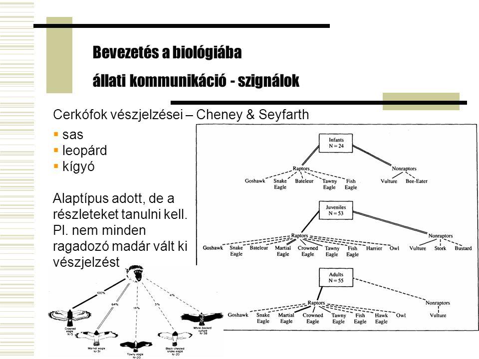 Bevezetés a biológiába állati kommunikáció - szignálok