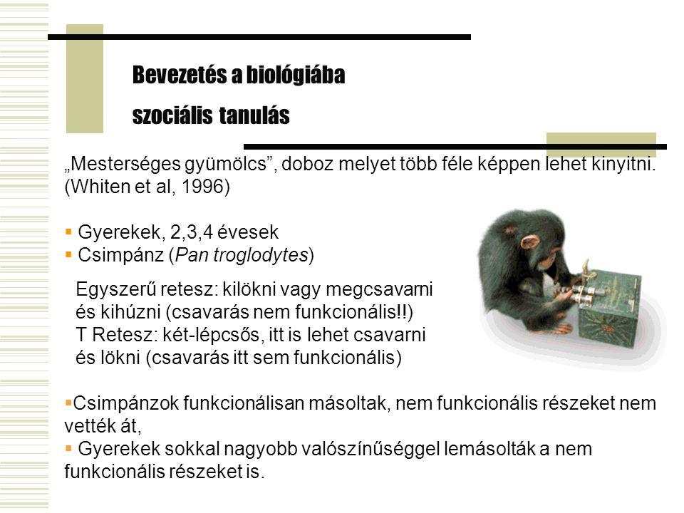 Bevezetés a biológiába szociális tanulás