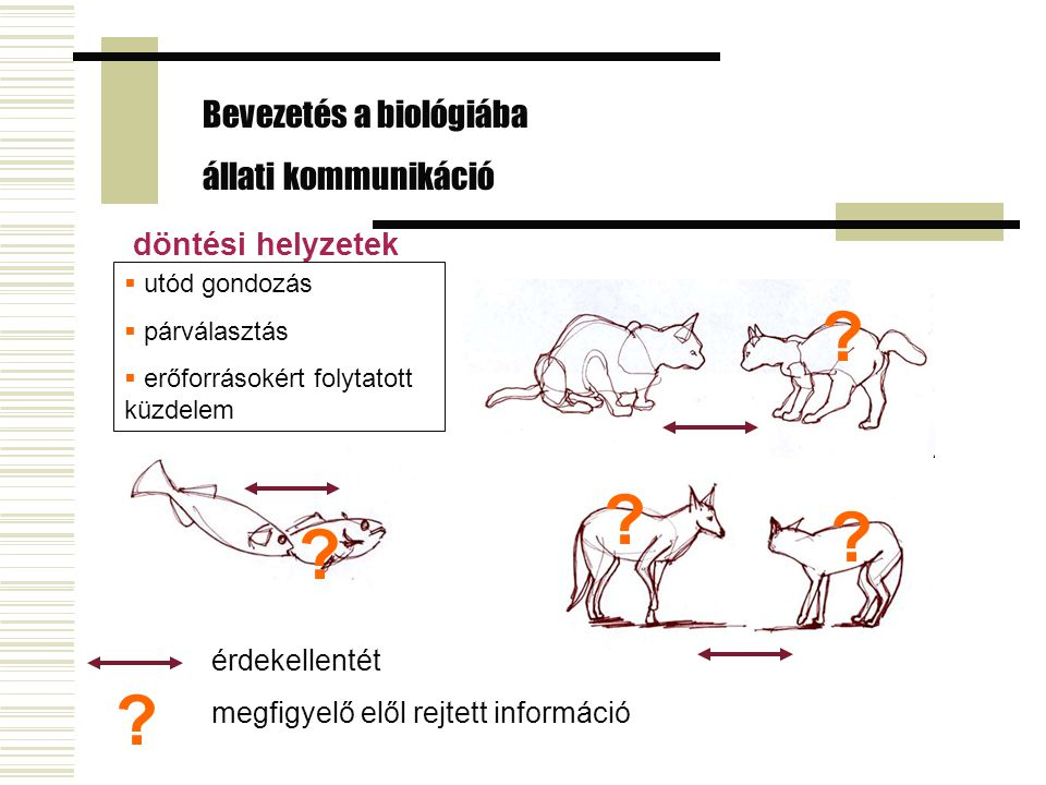 Bevezetés a biológiába állati kommunikáció döntési helyzetek