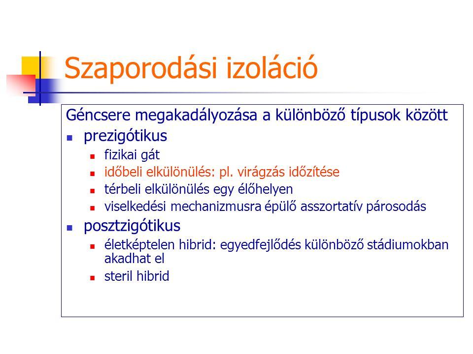 Szaporodási izoláció Géncsere megakadályozása a különböző típusok között. prezigótikus. fizikai gát.