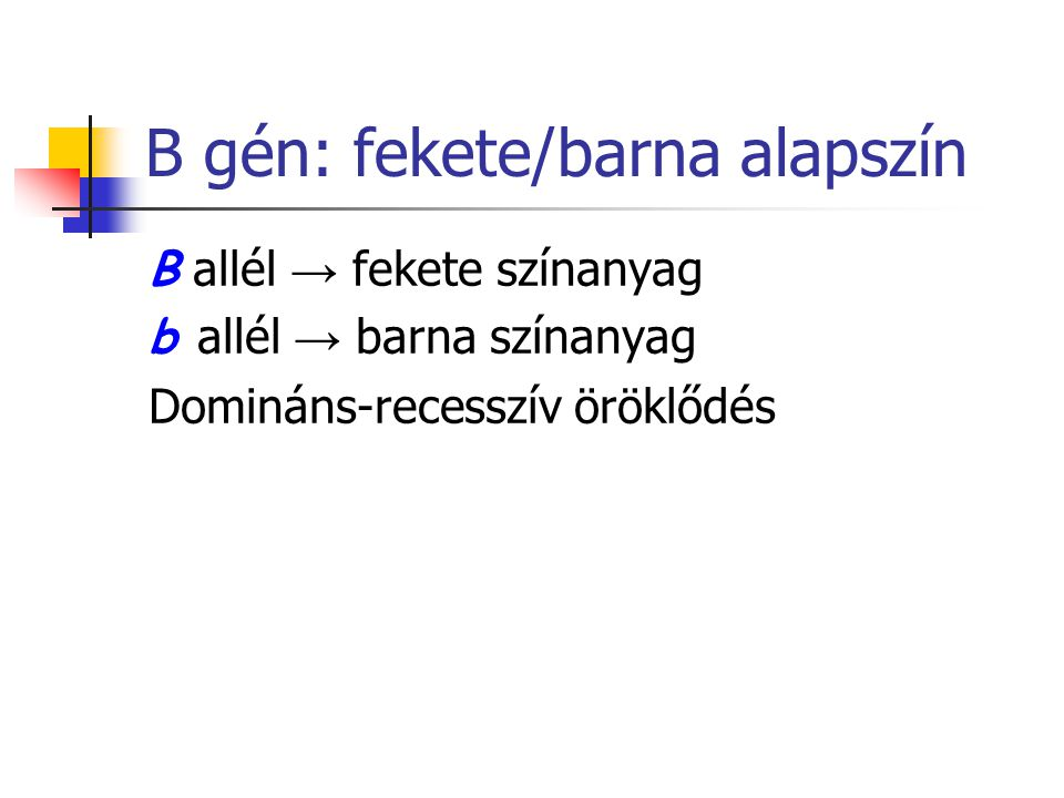 B gén: fekete/barna alapszín