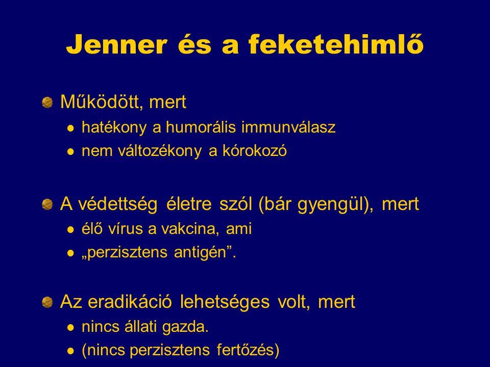 Jenner és a feketehimlő