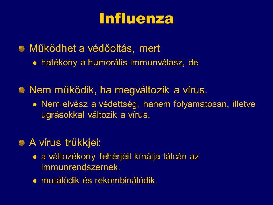 Influenza Működhet a védőoltás, mert